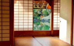 夏目漱石 作『こころ』/『吾輩は猫である』を読み解く!|日本文学から学ぶ小説の書き方Series.1